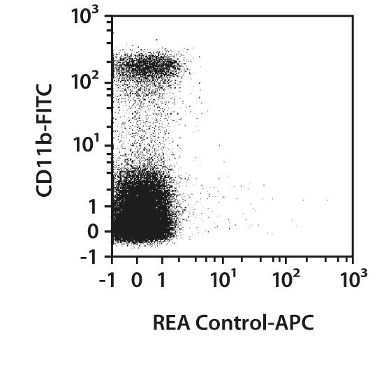 IL-1β Pro-form Antibody, anti-mouse, REAfinity™