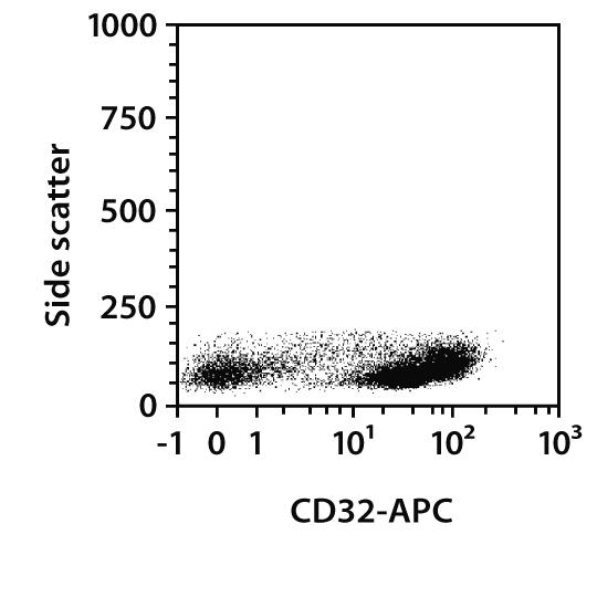 CD32 Antibody, anti-rat, REAfinity™