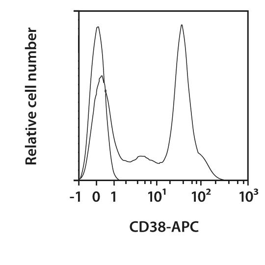 CD38 Antibody, anti-mouse, REAfinity™