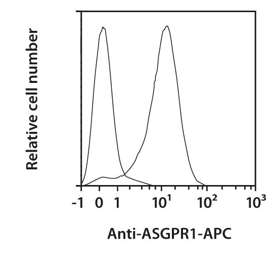 ASGPR1 Antibody, anti-human, REAfinity™