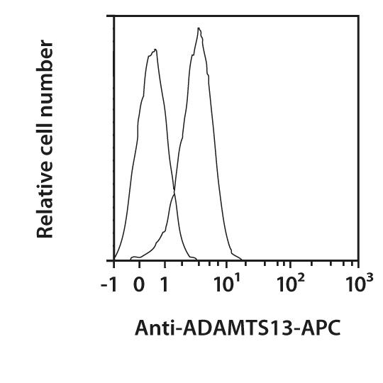 ADAMTS13 Antibody, anti-human, REAfinity™