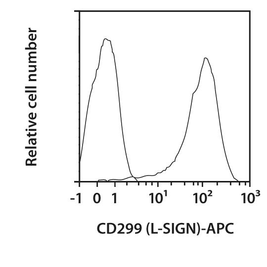 CD299 (L-SIGN) Antibody, anti-human, REAfinity™