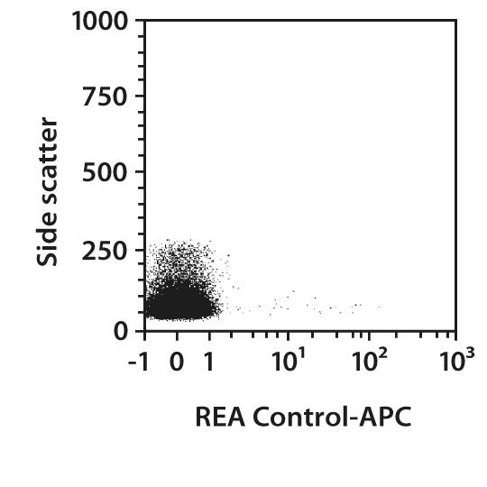 CD11b Antibody, anti-mouse, REAfinity™