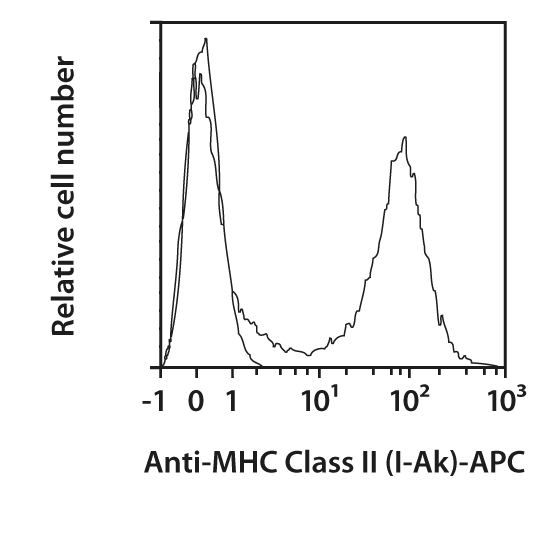 MHC Class II (I-Ak) Antibody, anti-mouse, REAfinity™