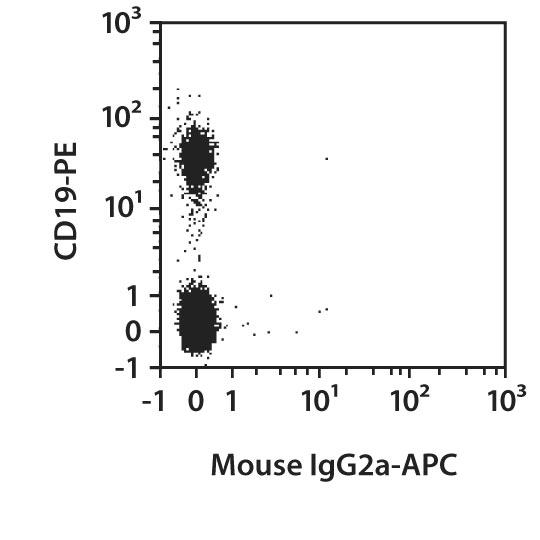 CD38 Antibody, anti-human