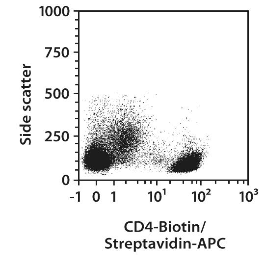Streptavidin conjugates