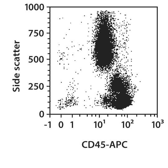 CD45 Antibody, anti-human