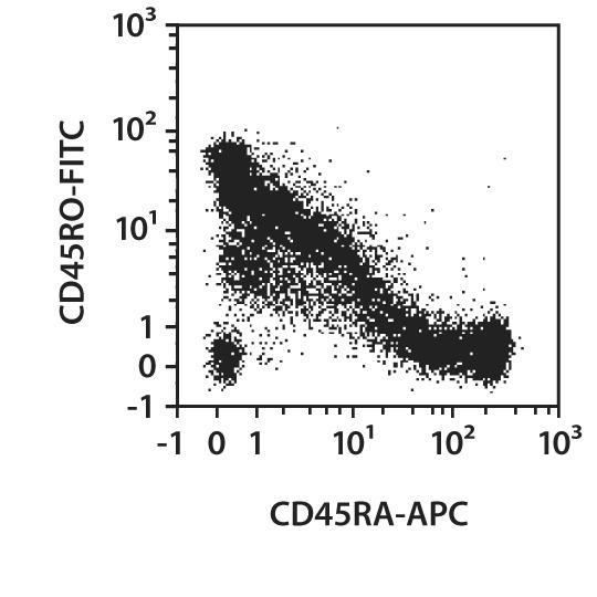 CD45RA Antibody, anti-human