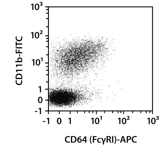 CD64 Antibody, anti-mouse, REAfinity™