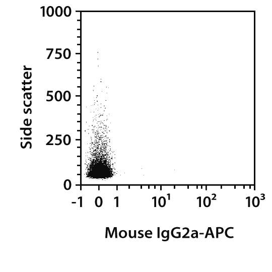 CD90.1 Antibody, anti-mouse/rat