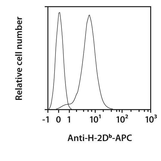 H-2Db Antibody, anti-mouse, REAfinity™