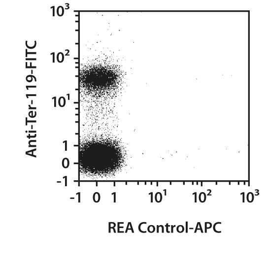 CD71 Antibody, anti-mouse, REAfinity™