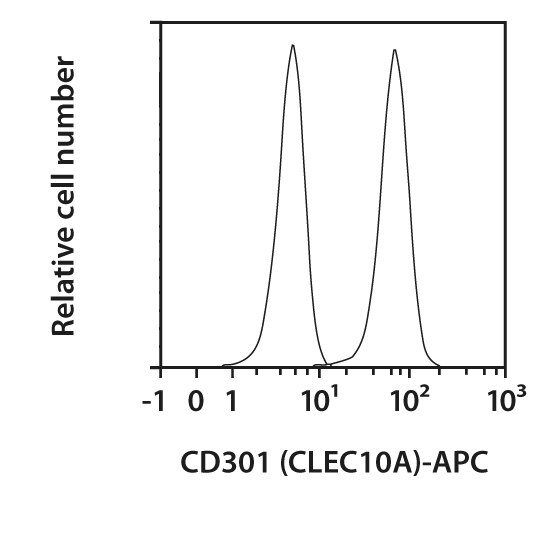 CD301 (CLEC10A) Antibody, anti-human, REAfinity™