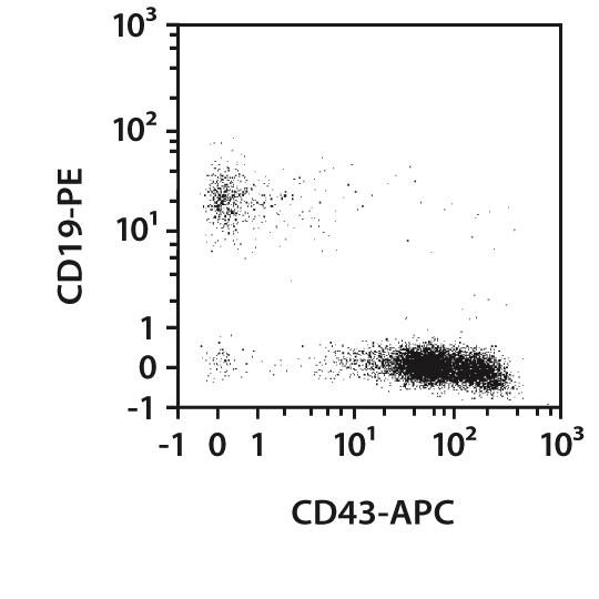 CD43 Antibody, anti-human