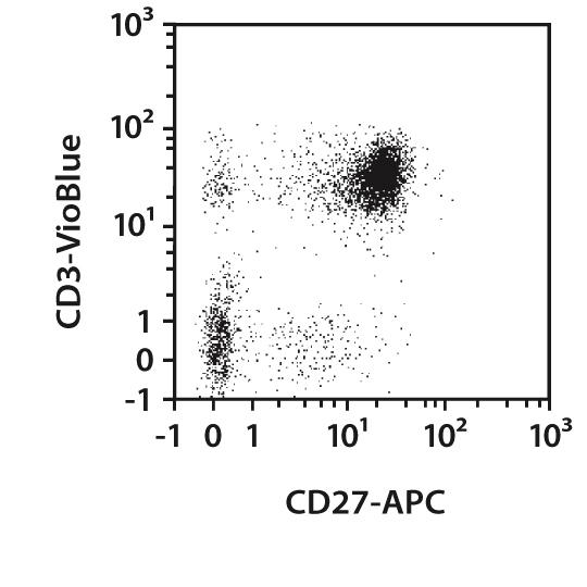 CD27 Antibody, anti-human/mouse