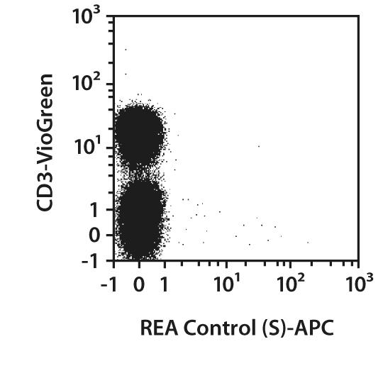 TCR Vβ1 Antibody, anti-human, REAfinity™