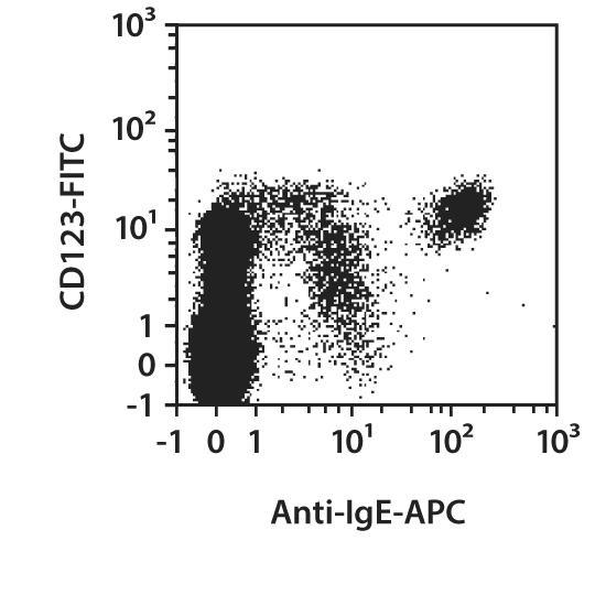 IgE Antibody, anti-human