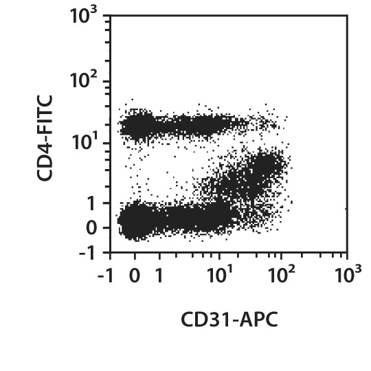 CD31 Antibody, anti-human