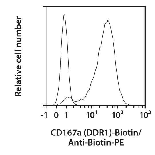 CD167a (DDR1) Antibody, anti-human