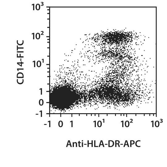 HLA-DR Antibody, anti-human