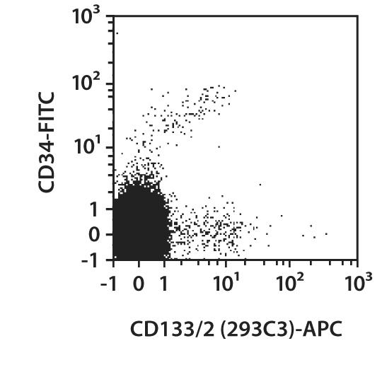CD133/2 Antibody, anti-human