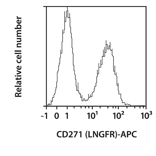 CD271 (LNGFR) Antibody, anti-human