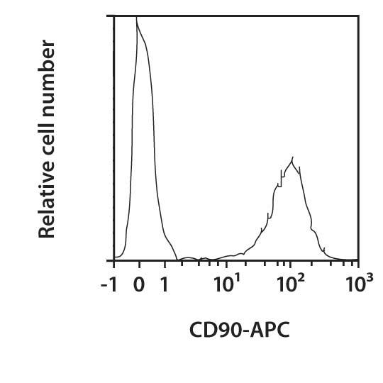 CD90 Antibody, anti-human