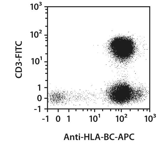 HLA-BC Antibody, anti-human, REAfinity™