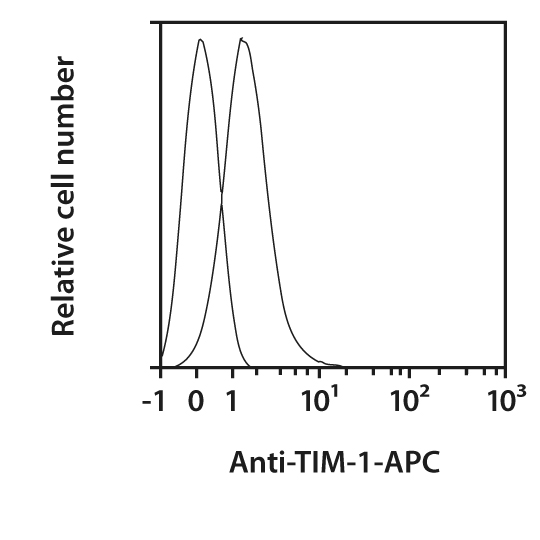 TIM-1 Antibody, anti-mouse, REAfinity™