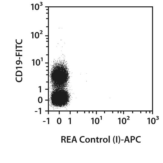 Aiolos Antibody, anti-mouse, REAfinity™