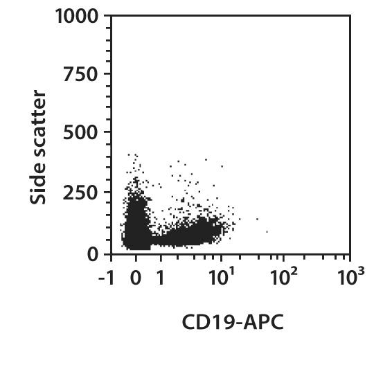 CD19 Antibody, anti-mouse