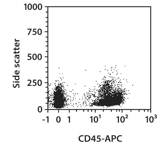 CD45 Antibody, anti-mouse