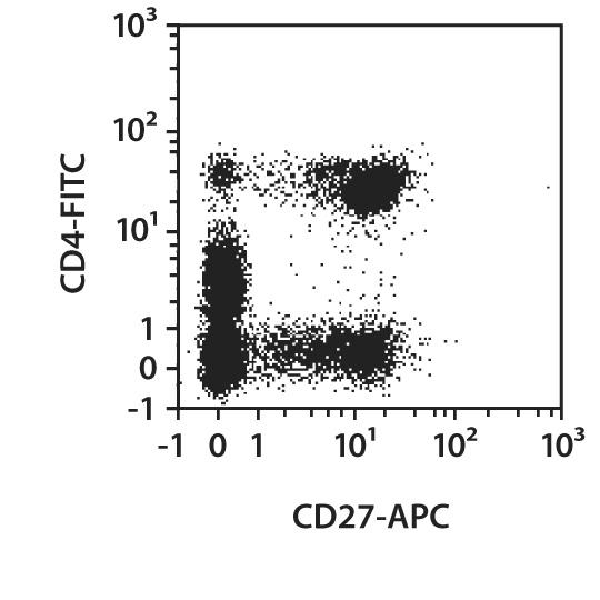 CD27 Antibody, anti-human