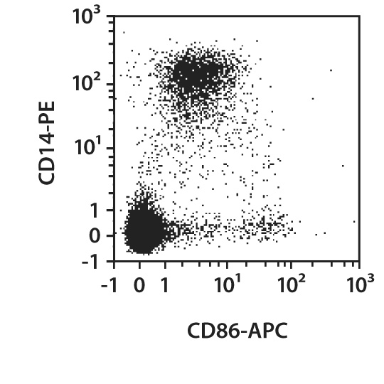 CD86 Antibody, anti-human