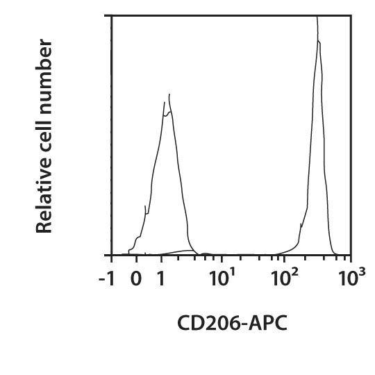 CD206 Antibody, anti-human