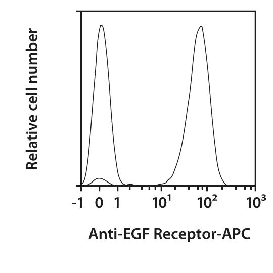 EGF Receptor Antibody, anti-human, REAfinity™
