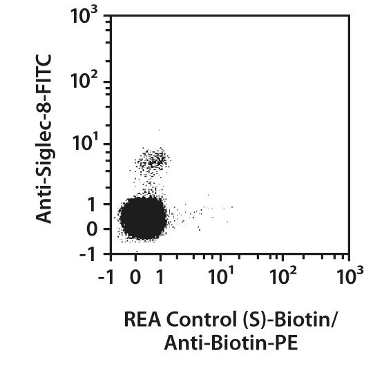 CD125 (IL-5Rα) Antibody, anti-human, REAfinity™