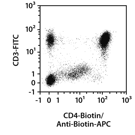 Biotin Antibody, REAfinity™