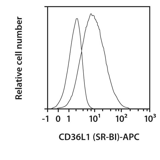 CD36L1 (SR-BI) Antibody, anti-human, REAfinity™