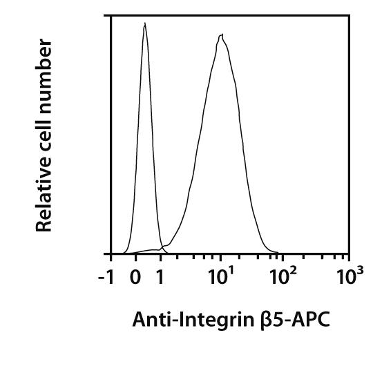 Integrin β5 Antibody, anti-human, REAfinity™