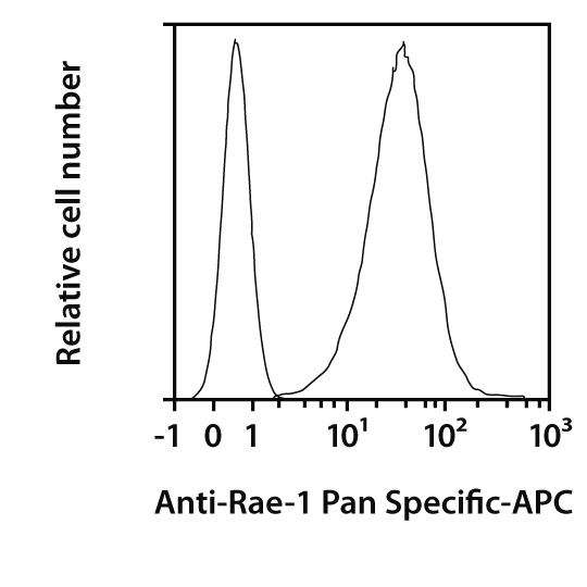 Rae-1 Pan Specific Antibody, anti-mouse, REAfinity™