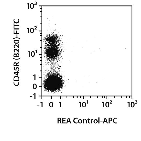 CD117 Antibody, anti-mouse, REAfinity™