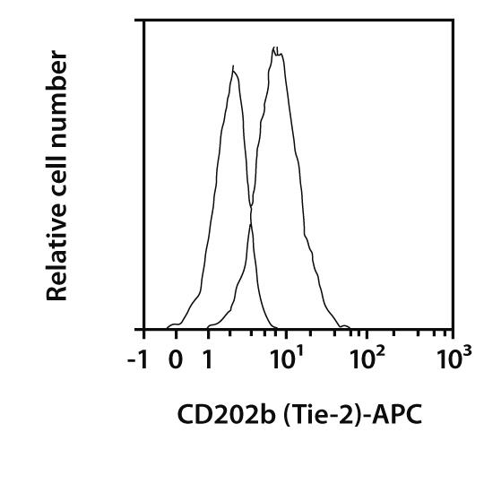 CD202b (TIE-2) Antibody, anti-mouse, REAfinity™
