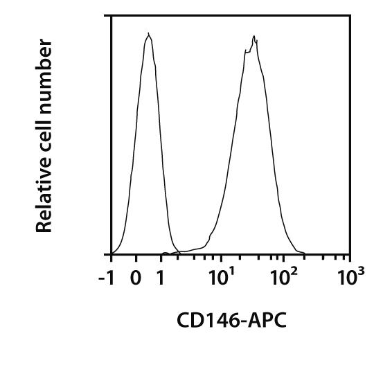 CD146 Antibody, anti-human, REAfinity™