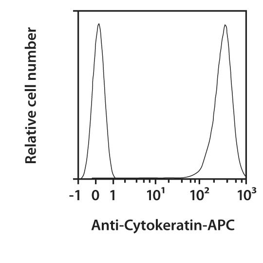 Cytokeratin Antibody, anti-human, REAfinity™