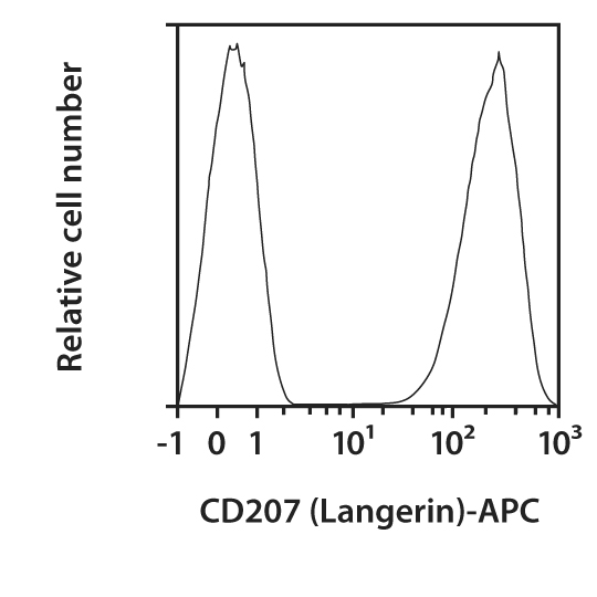 CD207 (Langerin) Antibody, anti-human, REAfinity™
