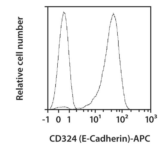 CD324 (E-Cadherin) Antibody, anti-human, REAfinity™