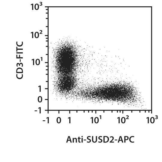 SUSD2 Antibody, anti-human, REAfinity™