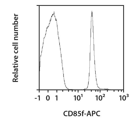CD85f (ILT11) Antibody, anti-human, REAfinity™