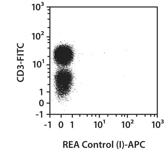ZAP70 Antibody, anti-human, REAfinity™